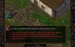 Baldurs Gate Enhanced Edition single screenshot 5/6