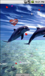 Lovely Dolphins Cute Live Wallpaper screenshot 2/4