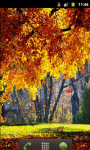 Forest Autumn Live Wallpaper screenshot 1/5