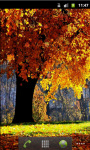 Forest Autumn Live Wallpaper screenshot 2/5