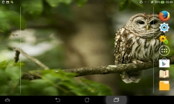 Wild Nature Live screenshot 4/6
