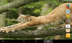 Wild Nature Live screenshot 5/6