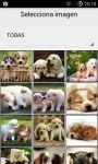 Whatsapp Dogs screenshot 6/6
