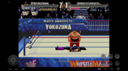 WWF Wrestlemania Arcade screenshot 3/4