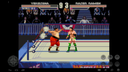 WWF Wrestlemania Arcade screenshot 4/4