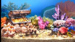 3D Living Aquarium Screensaver  screenshot 2/4
