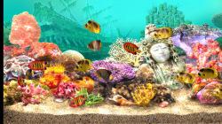 3D Living Aquarium Screensaver  screenshot 3/4