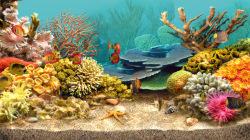 3D Living Aquarium Screensaver  screenshot 4/4