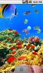 Aquatic Sea Live Wallpaper screenshot 1/5