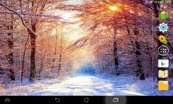 Amazing Winter screenshot 1/6