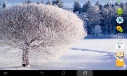 Amazing Winter screenshot 3/6