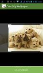 Dog Cute Wallpaper screenshot 3/3