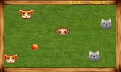 Hedgehog - apple seeker screenshot 1/4