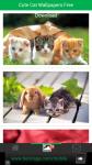 Free Download Cute Cat Wallpapers screenshot 2/6
