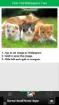 Free Download Cute Cat Wallpapers screenshot 3/6