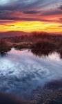 Beautiful Sunset Forest views Wallpaper screenshot 2/6