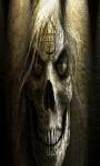 889 Skull Wallpapers screenshot 2/6
