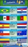 FIFA Worldcup 2014 screenshot 3/3