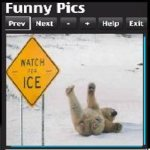 FunnyPictures screenshot 3/3