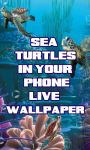 Sea Turtles in your phone LWP free screenshot 1/3