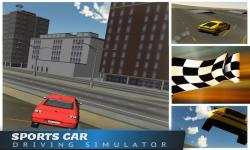 Sports Car Driving Simulator screenshot 2/5