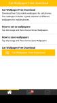 Free Download Cat Wallpaper screenshot 1/6
