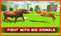 Angry Tiger in Crazy City screenshot 2/4