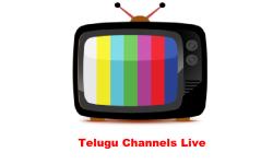 Telugu Channels Live screenshot 1/1