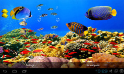Aquarium Live Wallpapers Free screenshot 1/4