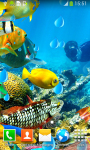 Coral Reef Live Wallpapers Free screenshot 5/6