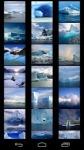 Icebergs Wallpapers screenshot 1/6