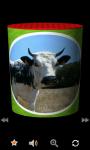 MooBox : Funny Animal SoundBox screenshot 1/6