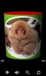 MooBox : Funny Animal SoundBox screenshot 2/6