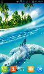 Dolphin Live Wallpaper Best screenshot 3/5