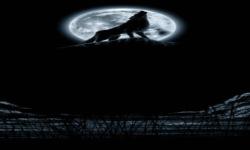 Night Wolf TWP screenshot 2/3