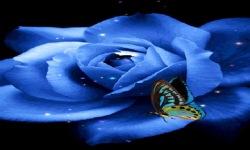 Blue Butterfly Rose Live Wallpaper screenshot 2/3