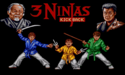 Ninjas kick back screenshot 2/3