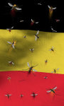 Belgium flag Free screenshot 2/5