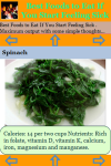 Best Foods to Eat If You Start Feeling Sick screenshot 3/3