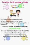 Mundo Mascotas Pet Store screenshot 2/3