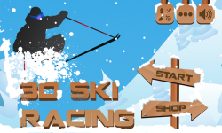 3D Ski Racing screenshot 1/6