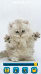 Cats Wallpapers free screenshot 3/5