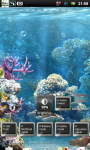 Underwater Coral Reef Live Wallpaper screenshot 3/6
