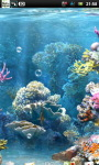 Underwater Coral Reef Live Wallpaper screenshot 4/6