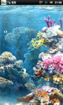 Underwater Coral Reef Live Wallpaper screenshot 5/6