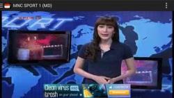 Indonesia TV Live Streaming screenshot 1/2