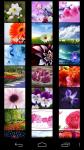 Flower Wallpapers free screenshot 1/5