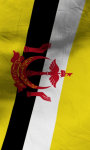 Brunei flag lwp Free screenshot 3/5