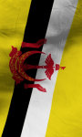 Brunei flag lwp Free screenshot 4/5