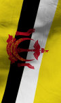 Brunei flag lwp Free screenshot 5/5